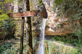 Cascadas de Aconco  y Tetela Pueblo Mágico ⭐️
